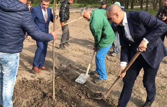 Цветанов засади 28 липи и кипариси в Девня