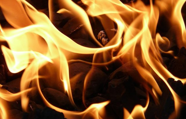 Пожарът на остров Закинтос унижощи 700 хектара земя
